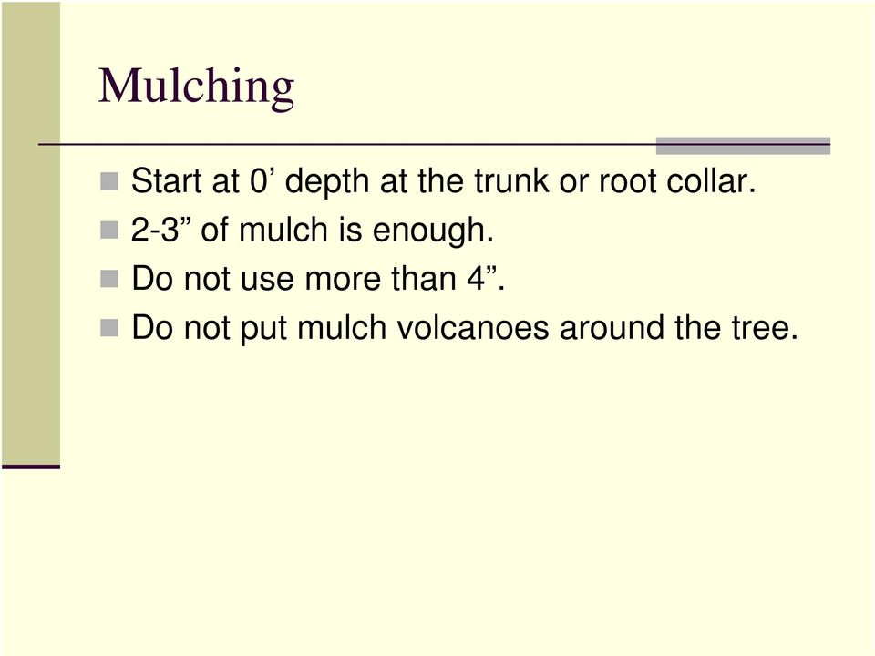 2-3 of mulch is enough.