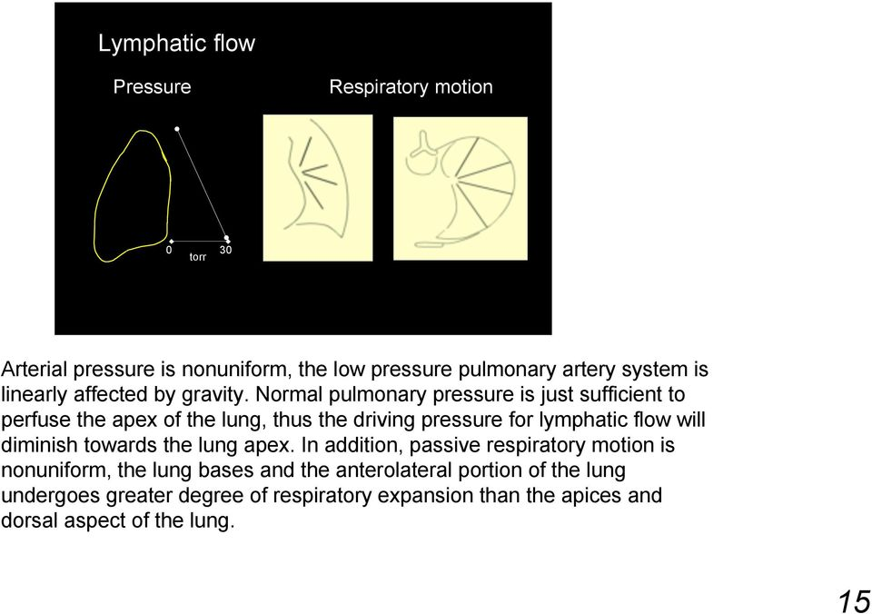 Normal pulmonary pressure is just sufficient to perfuse the apex of the lung, thus the driving pressure for lymphatic flow will