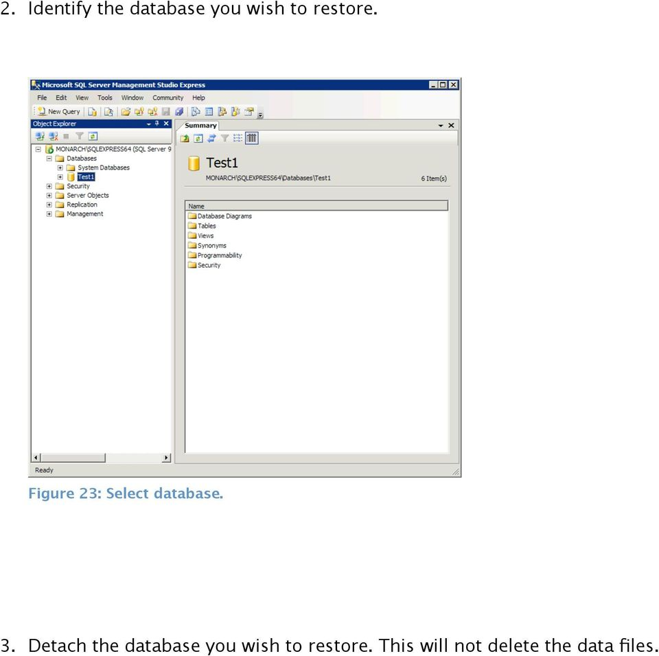 Detach the database you wish to