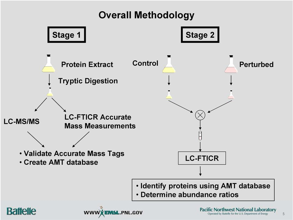 Measurements Validate Accurate Mass Tags Create AMT database