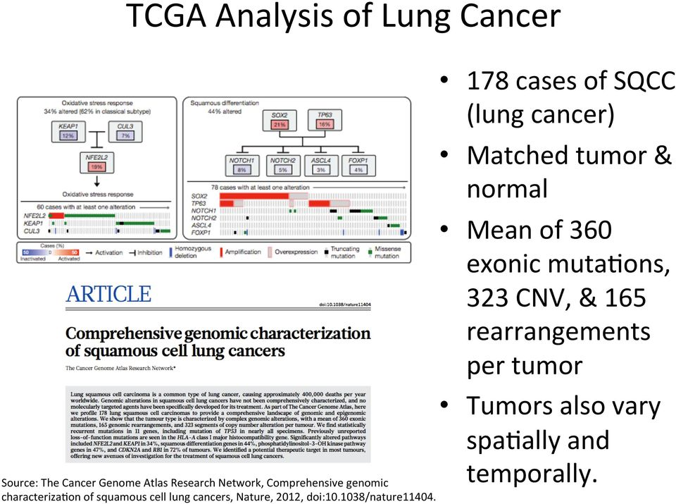 on of squamous cell lung cancers, Nature, 2012, doi:10.1038/nature11404.