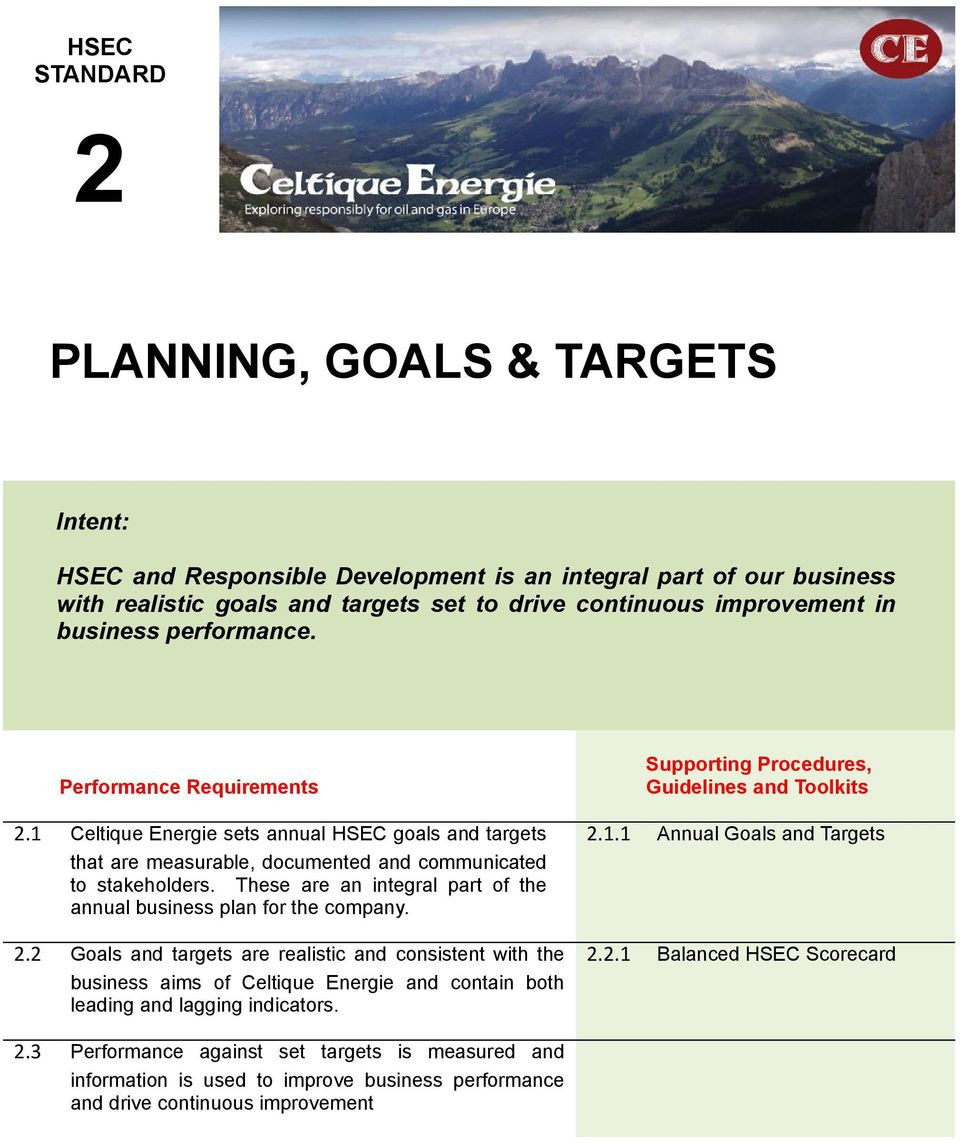 These are an integral part of the annual business plan for the company. 2.1.1 Annual Goals and Targets 2.