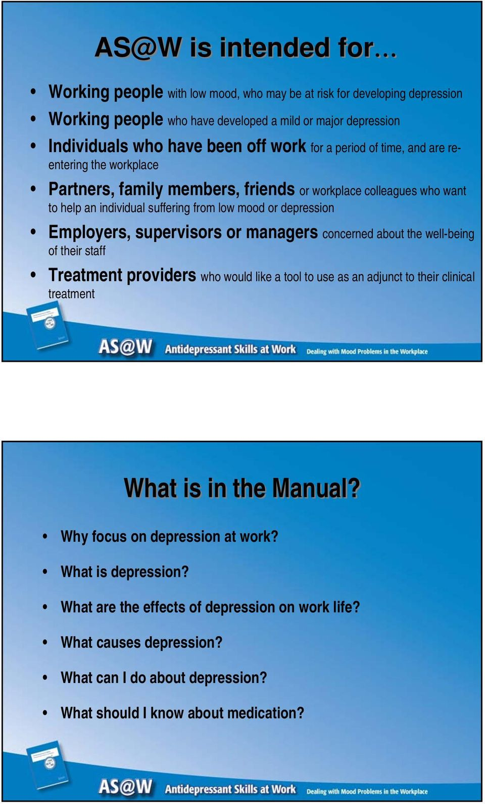 Employers, supervisors or managers concerned about the well-being of their staff Treatment providers who would like a tool to use as an adjunct to their clinical treatment What is in the