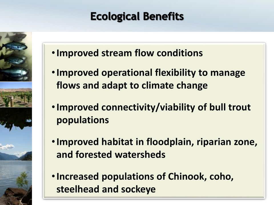 trout populations Improved habitat in floodplain, riparian zone, and
