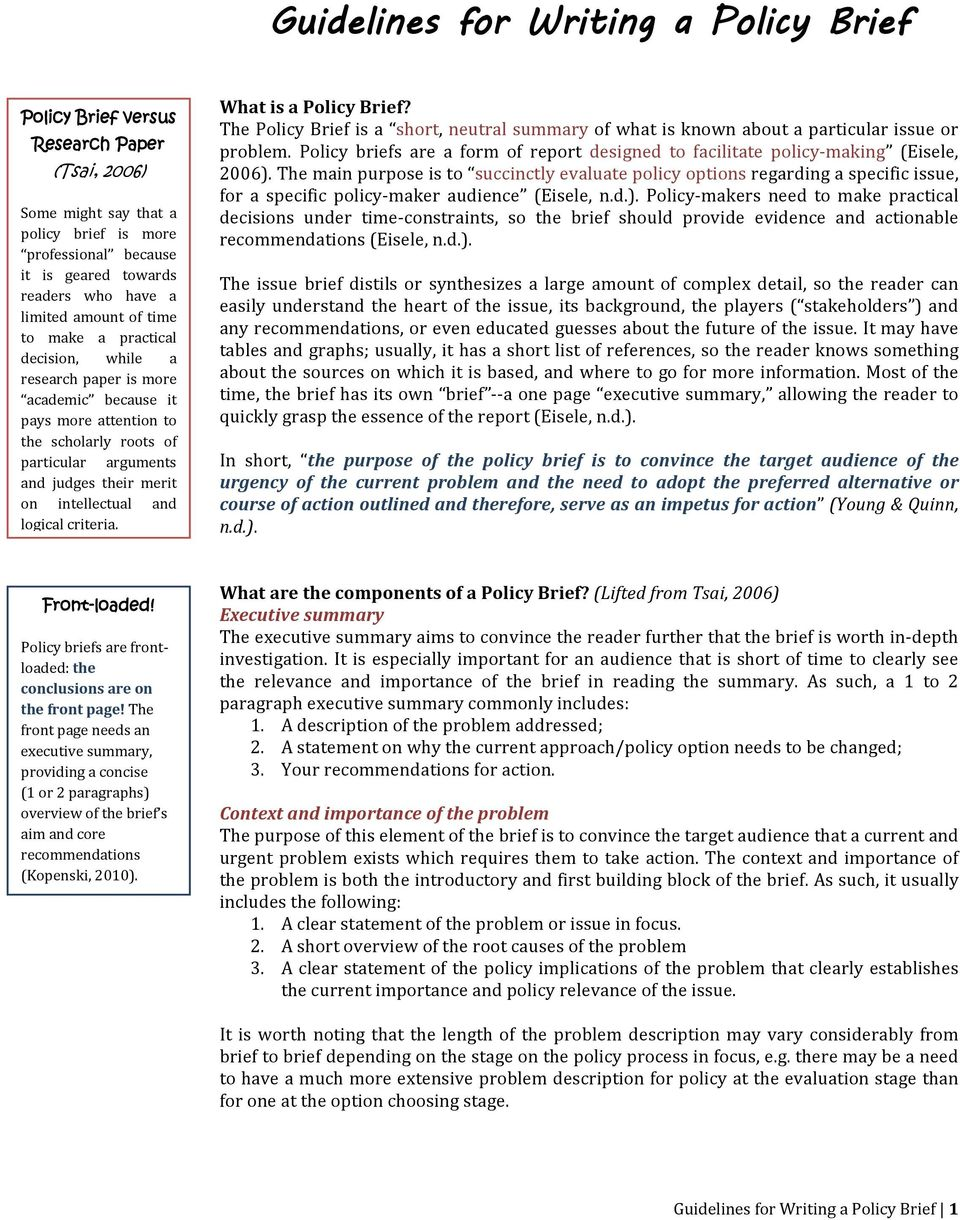policy brief example template.html