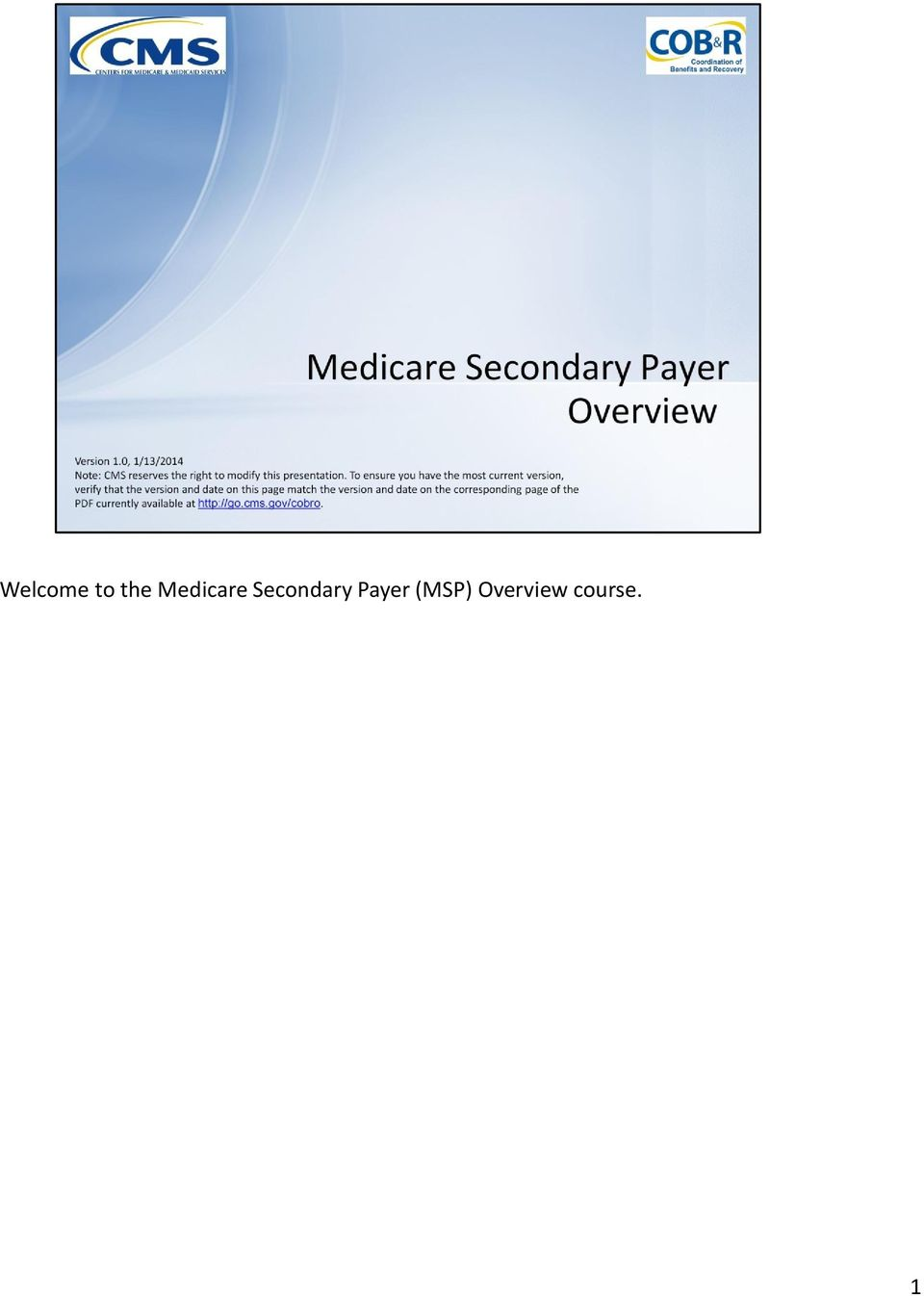 Secondary Payer