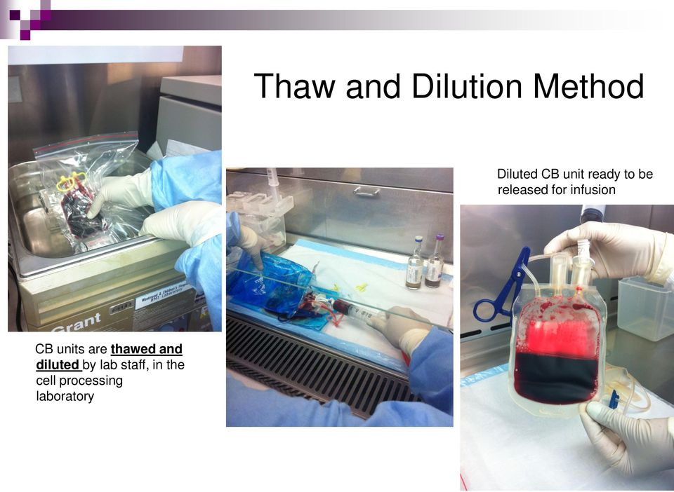 CB units are thawed and diluted by lab