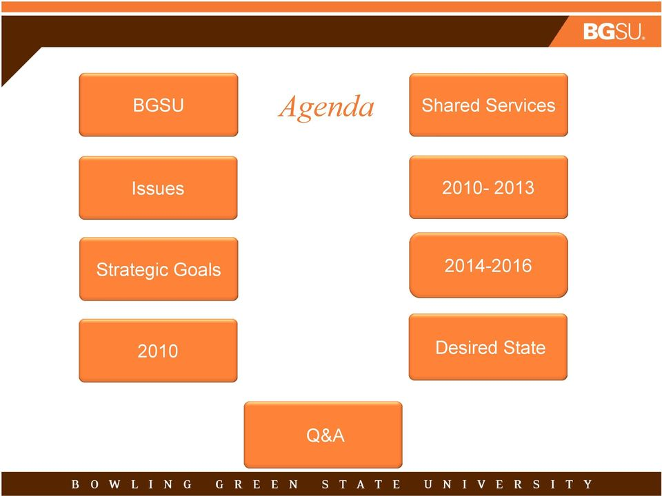 2010-2013 Strategic Goals