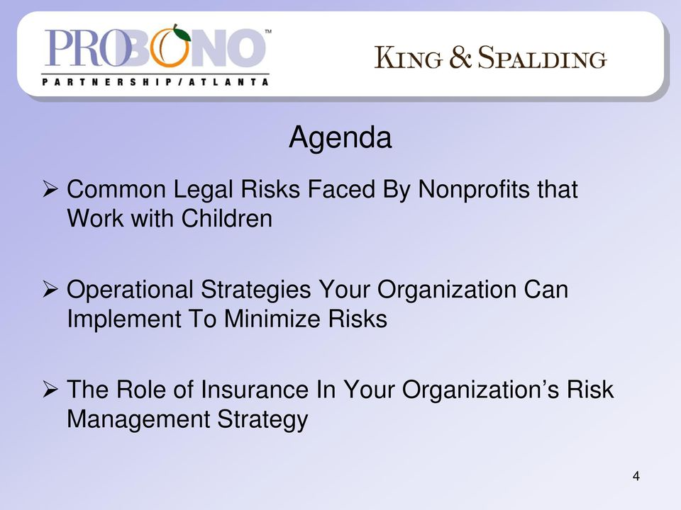 Organization Can Implement To Minimize Risks The Role