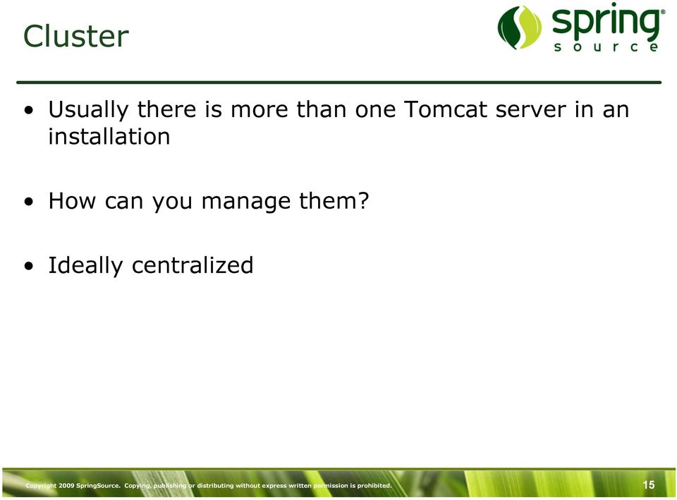 Ideally centralized Copyright 2009 SpringSource.