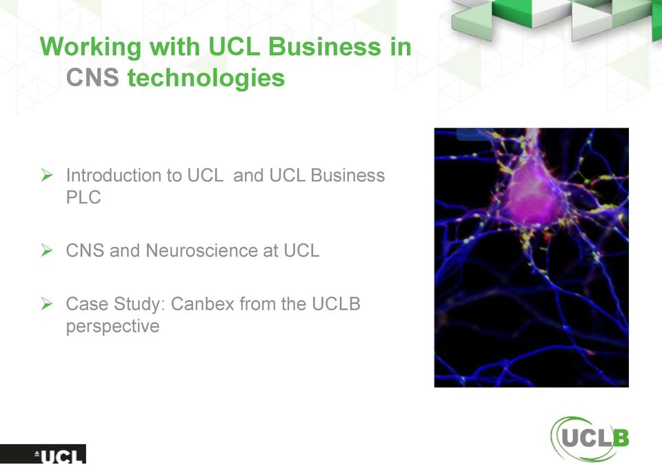 UCL Business PLC CNS and Neuroscience
