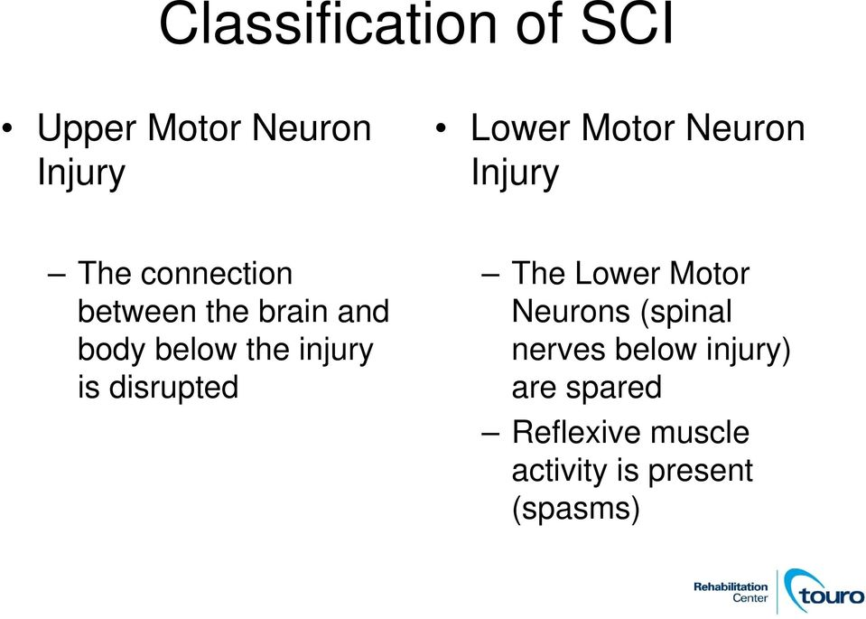 the injury is disrupted The Lower Motor Neurons (spinal nerves