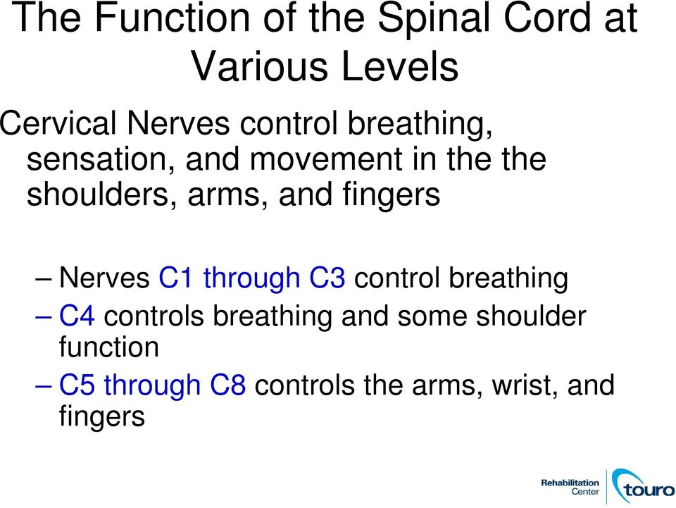 and fingers Nerves C1 through C3 control breathing C4 controls