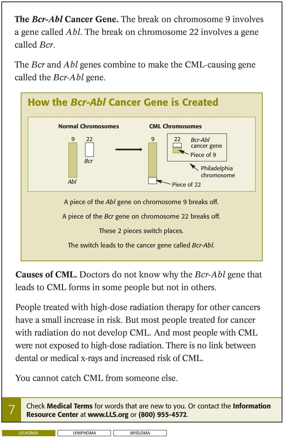 How the Bcr-Abl Cancer Gene is Created Normal Chromosomes 9 22 Bcr Abl CML Chromosomes 9 22 Piece of 22 Bcr-Abl cancer gene Piece of 9 Philadelphia chromosome A piece of the Abl gene on chromosome 9