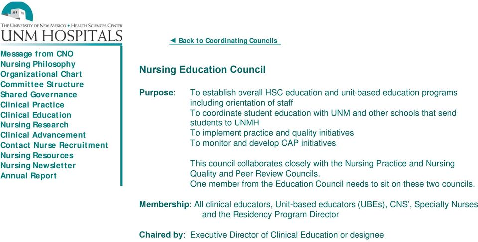 Nursing Committee Structure - PDF