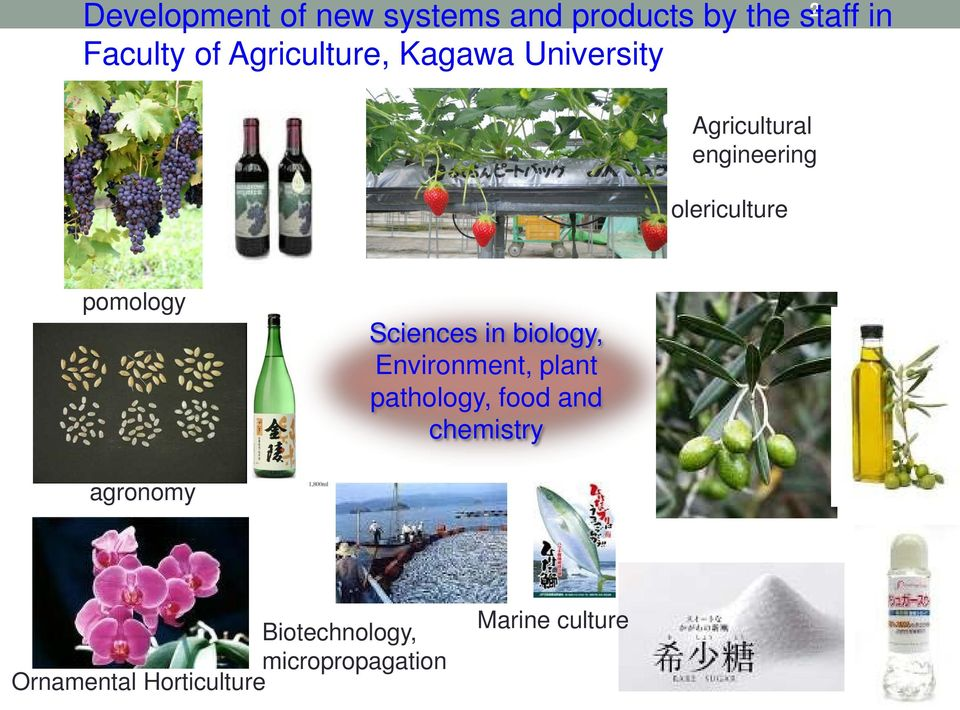 pomology Sciences in biology, Environment, plant pathology, food and