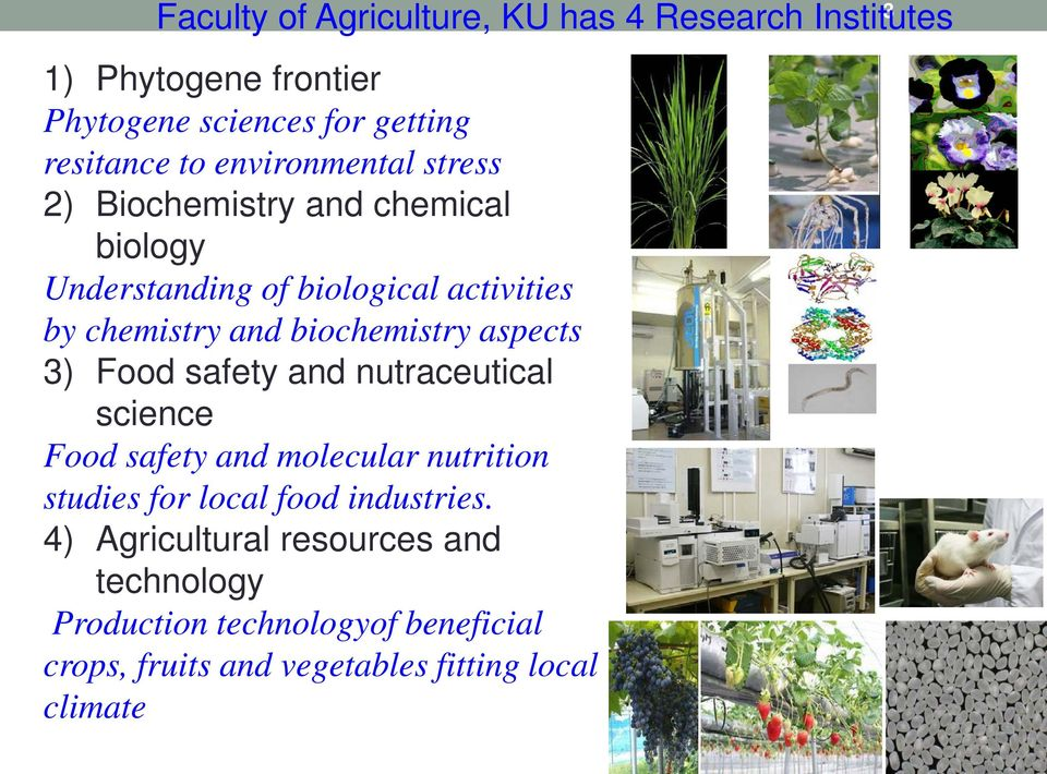 biochemistry aspects 3) Food safety and nutraceutical science Food safety and molecular nutrition studies for local food