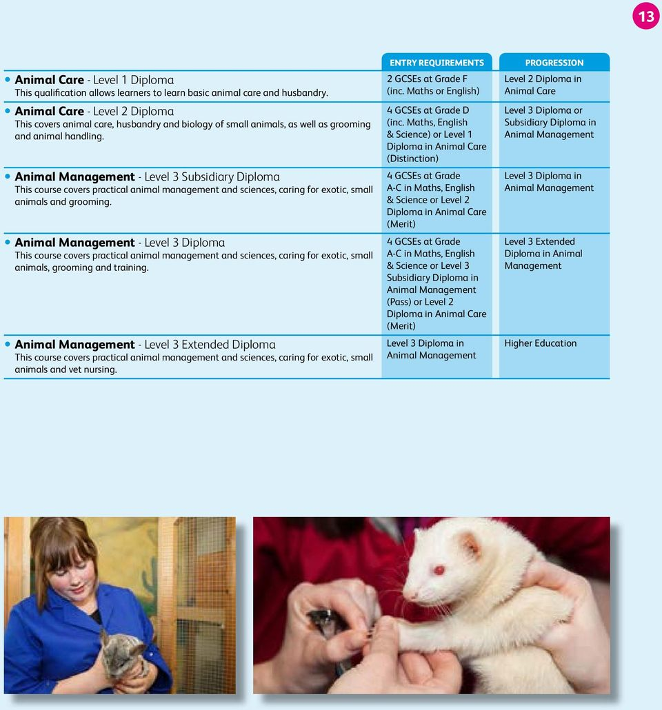 yanimal Management - Level 3 Subsidiary Diploma This course covers practical animal management and sciences, caring for exotic, small animals and grooming.