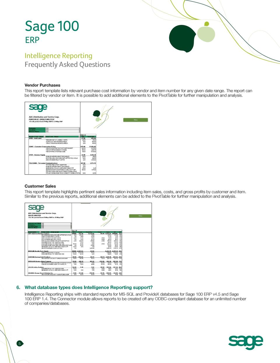 Customer Sales This report template highlights pertinent sales information including item sales, costs, and gross profits by customer and item.