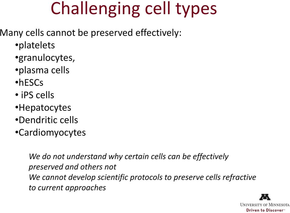 Cardiomyocytes We do not understand why certain cells can be effectively preserved