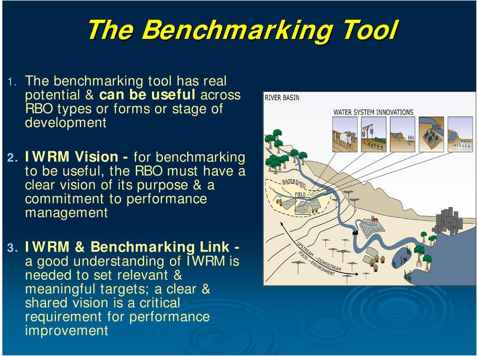 IWRM Vision - for benchmarking to be useful, the RBO must have a clear vision of its purpose & a commitment to