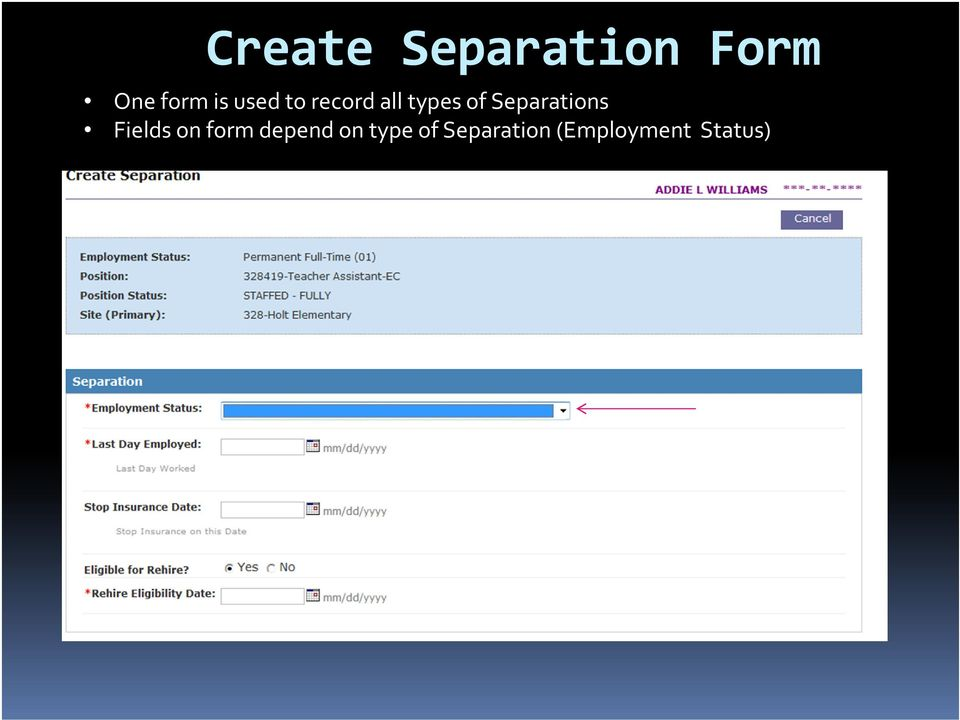 Separations Fields on form depend