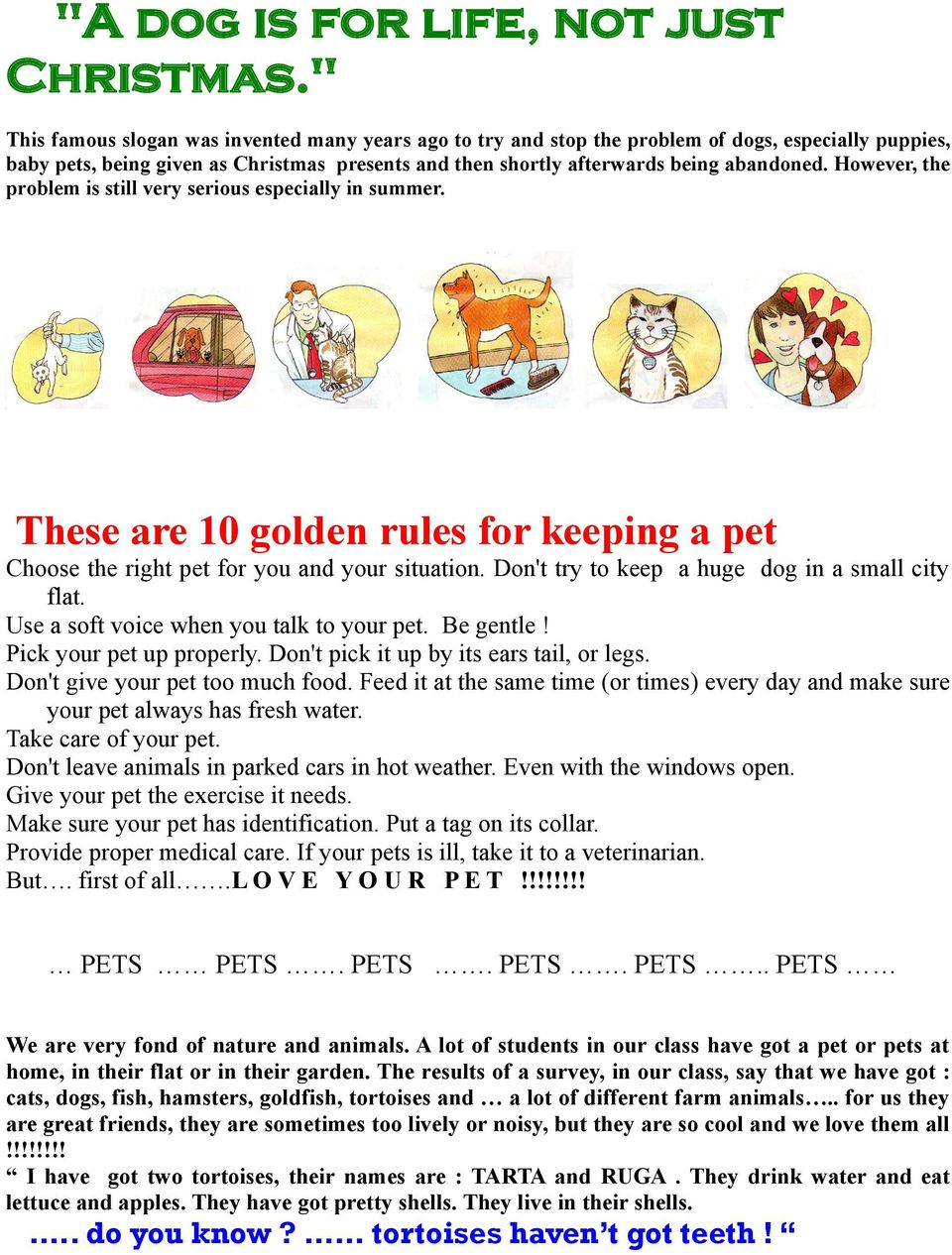 However, the problem is still very serious especially in summer. These are 10 golden rules for keeping a pet Choose the right pet for you and your situation.