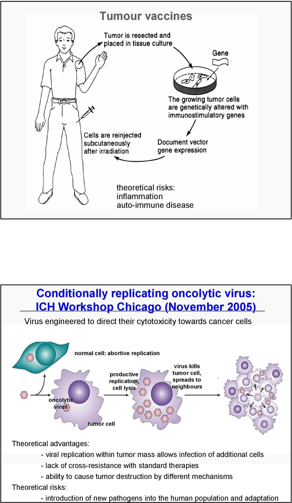 oncolytic virus tumor cell Theoretical advantages: - viral replication within tumor mass allows infection of additional cells - lack of cross-resistance with