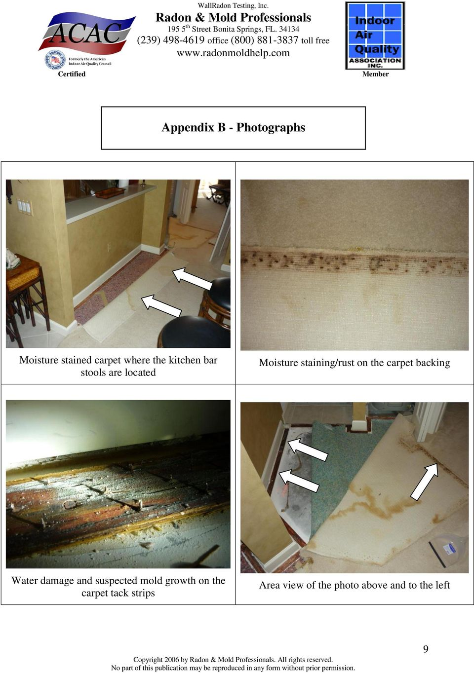 damage and suspected mold growth on the carpet tack strips Area view of