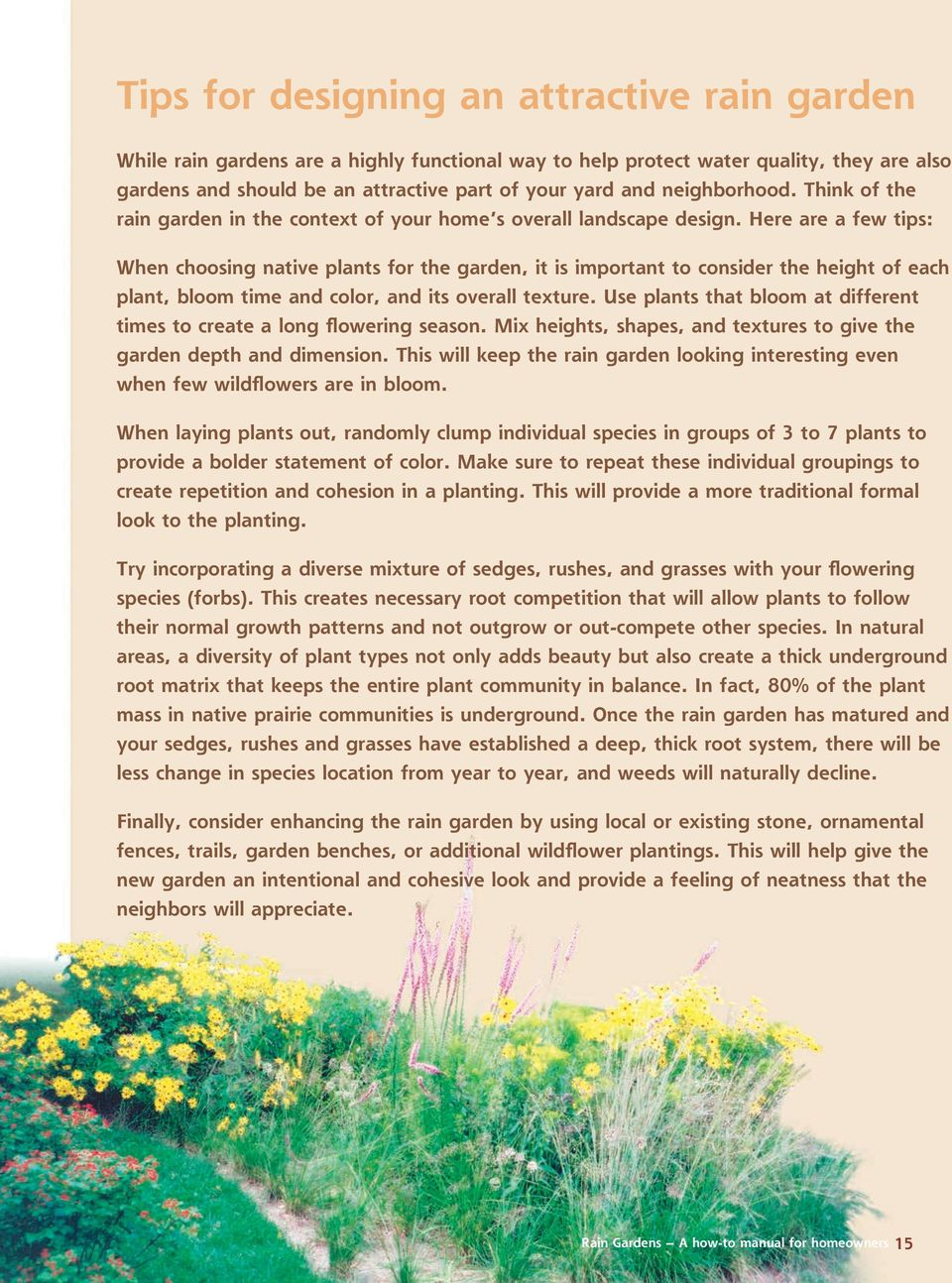 Anyone who has ever done any gardening will have no problem planting a rain garden, but a few basic reminders are listed below.