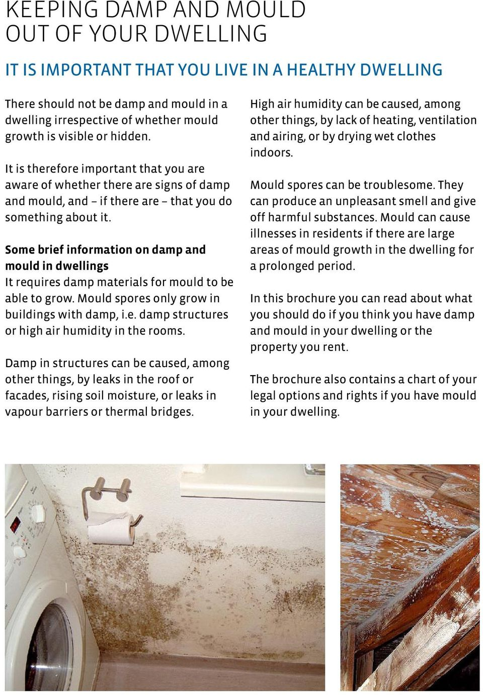 Some brief information on damp and mould in dwellings It requires damp materials for mould to be able to grow. Mould spores only grow in buildings with damp, i.e. damp structures or high air humidity in the rooms.