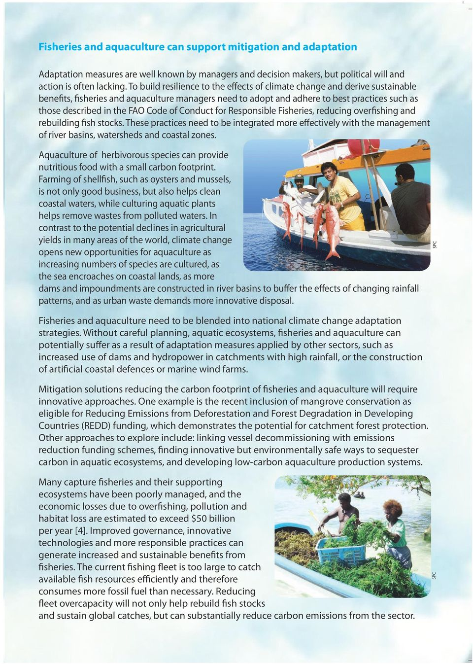 Code of Conduct for Responsible Fisheries, reducing overfishing and rebuilding fish stocks.