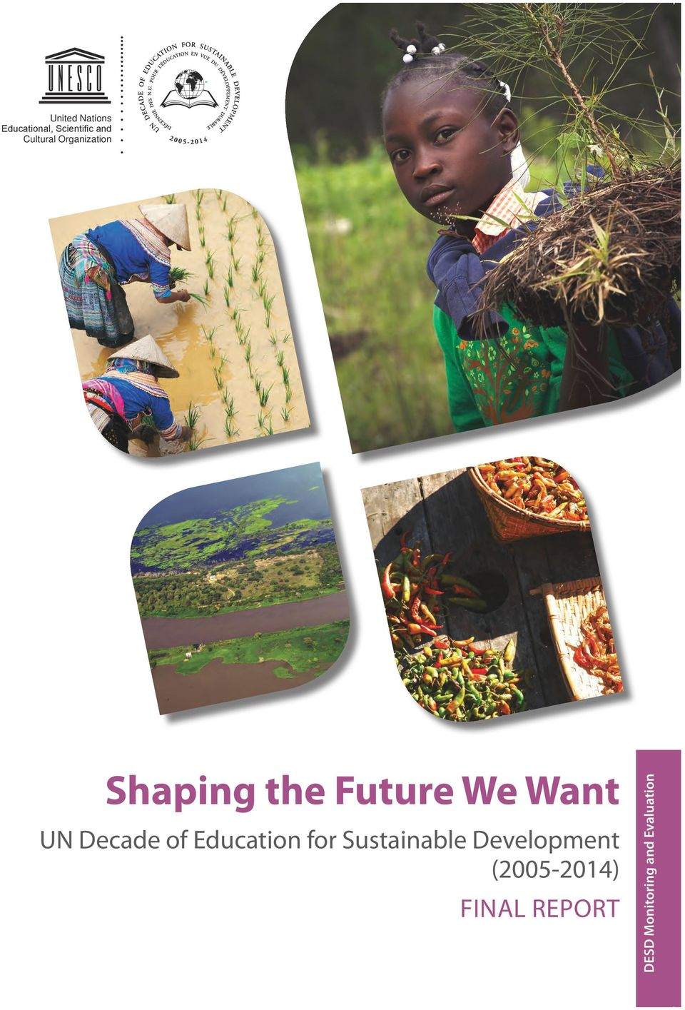 Organization Shaping the Future We Want UN Decade of