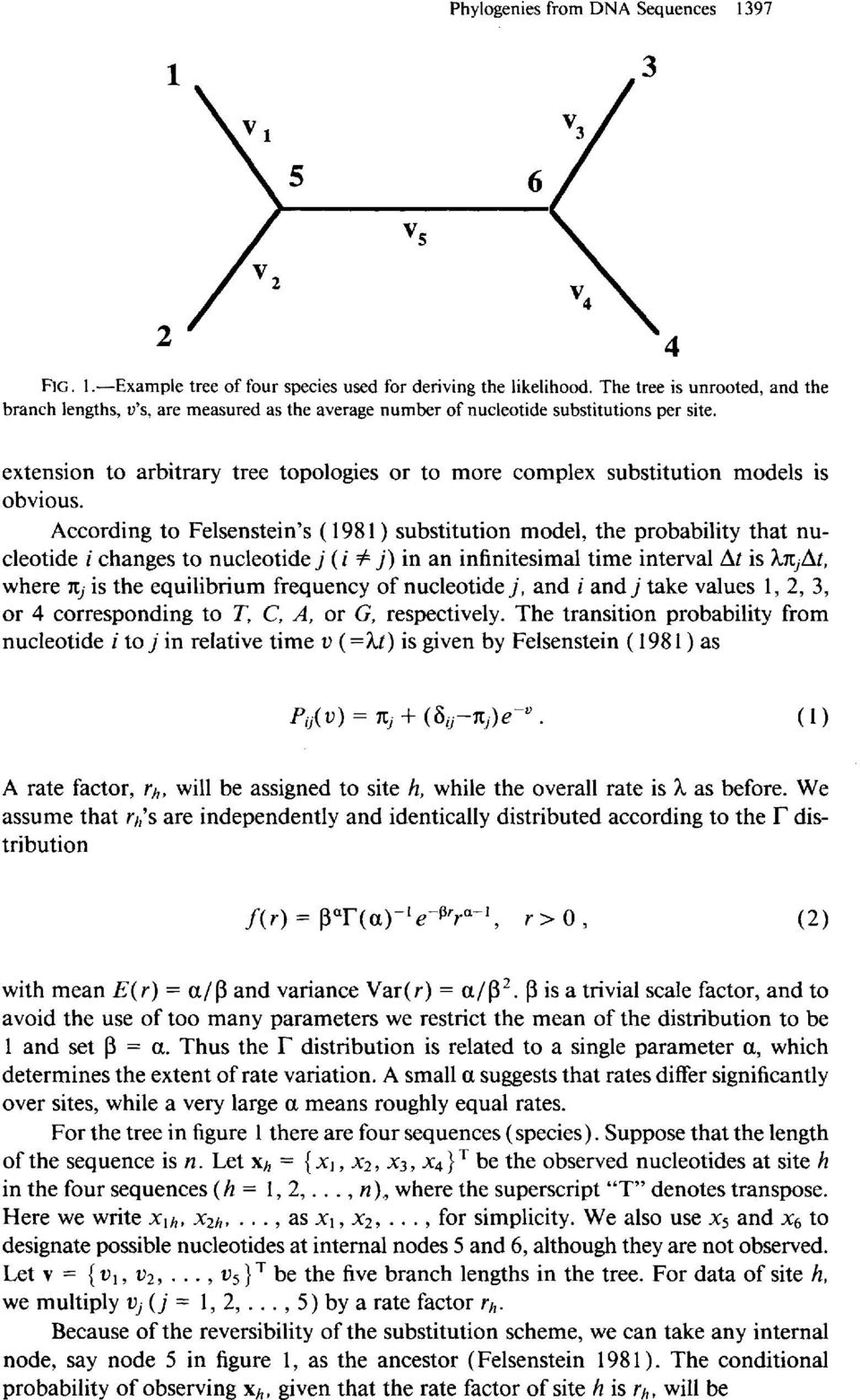 and the extension to arbitrary tree topologies or to more complex substitution models is obvious.