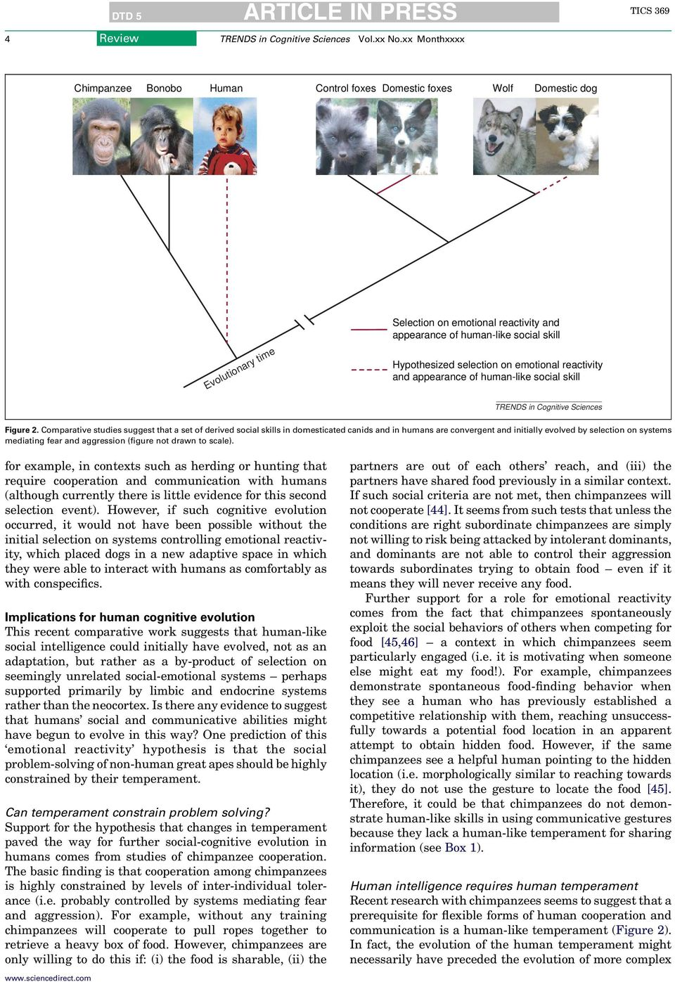 Comparative studies suggest that a set of derived social skills in domesticated canids and in humans are convergent and initially evolved by selection on systems mediating fear and aggression (figure