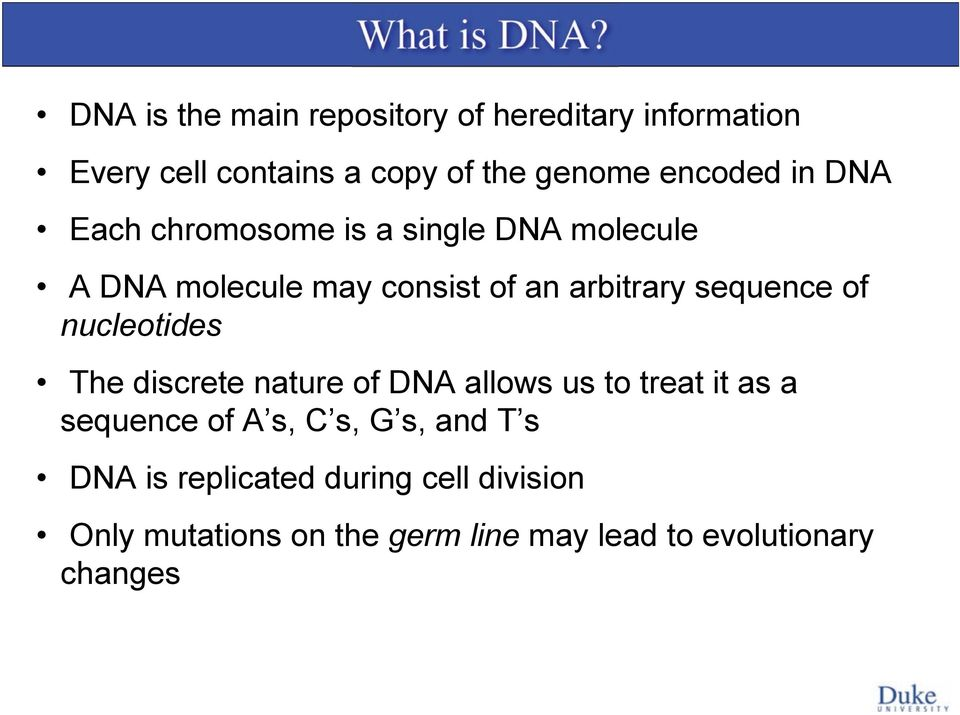DNA Each chromosome is a single DNA molecule A DNA molecule may consist of an arbitrary sequence of