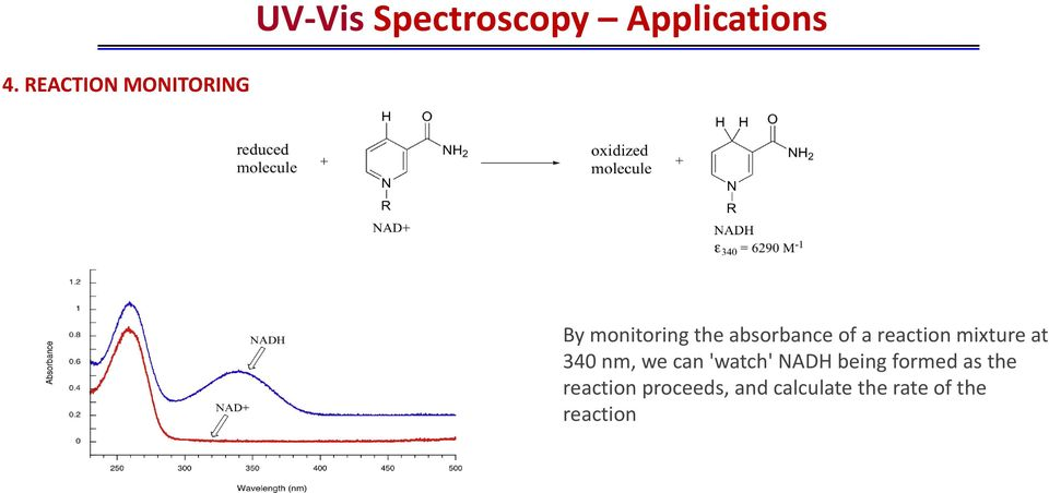 reaction mixture at 340 nm, we can 'watch' NADH being