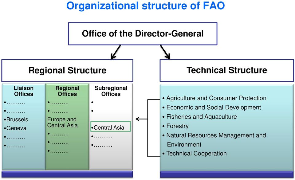 Offices Central Asia Agriculture and Consumer Protection Economic and Social Development