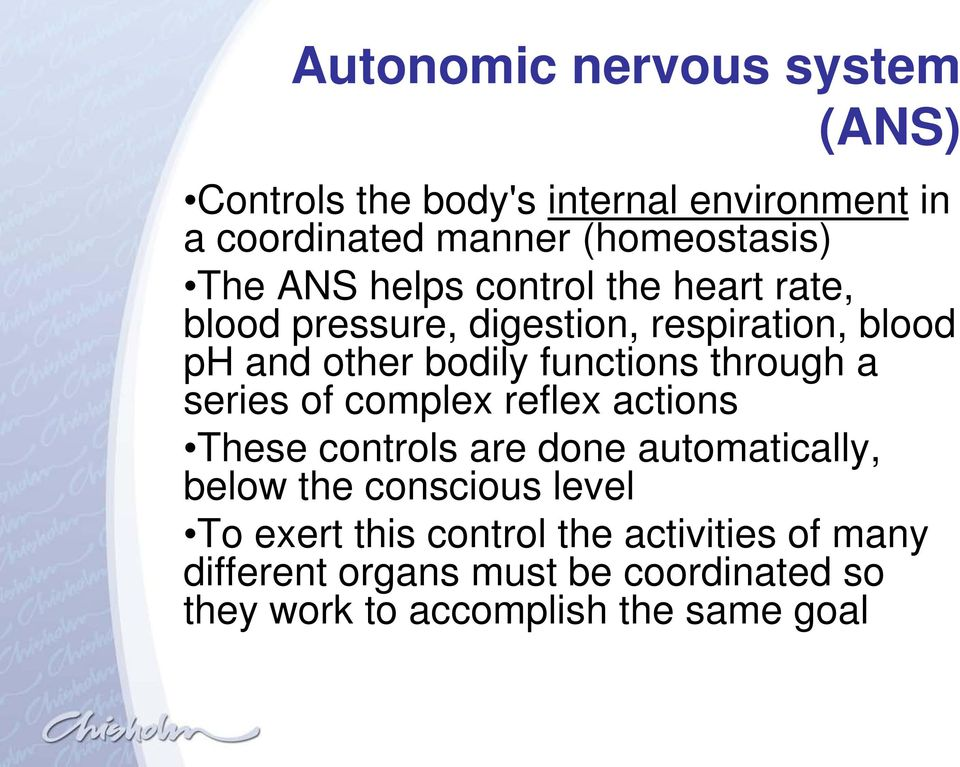 through a series of complex reflex actions These controls are done automatically, below the conscious level To
