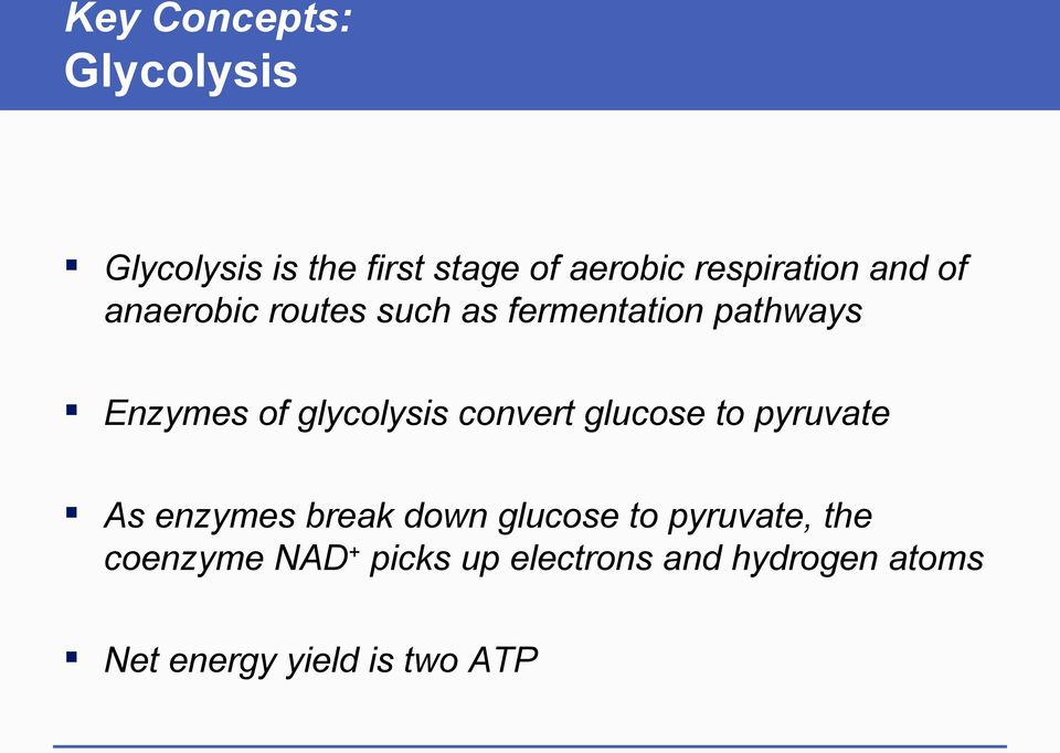 glycolysis convert glucose to pyruvate As enzymes break down glucose to