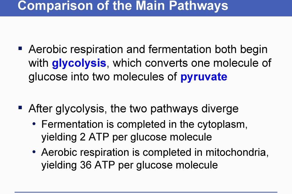 glycolysis, the two pathways diverge Fermentation is completed in the cytoplasm, yielding 2