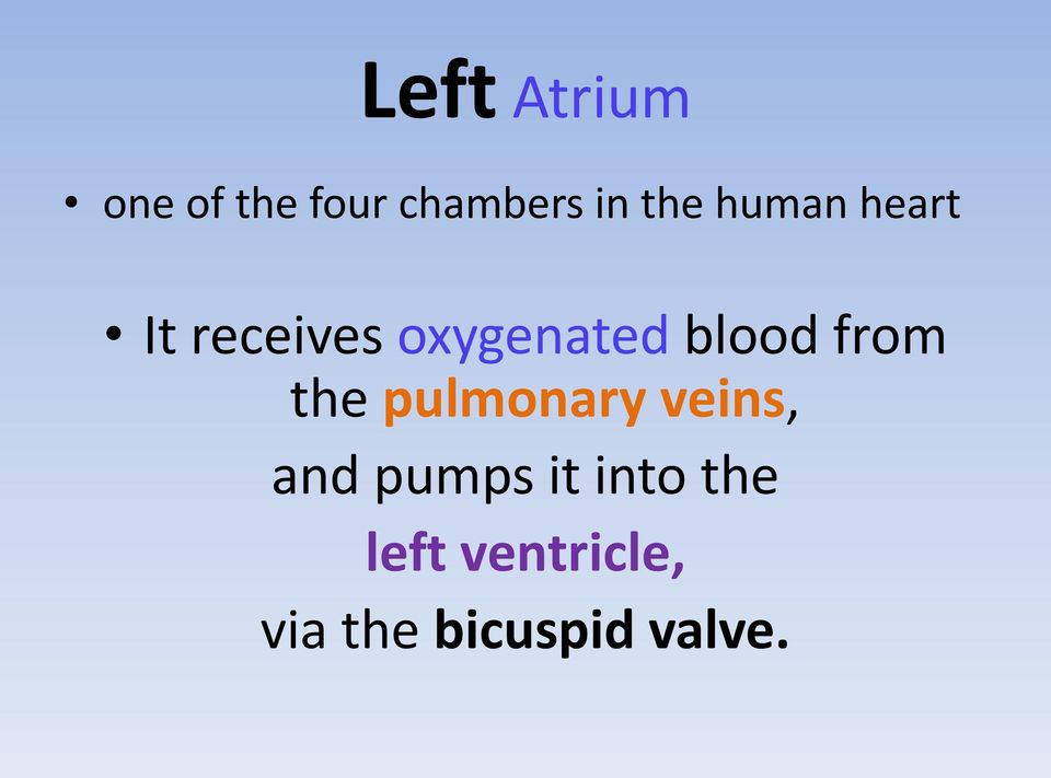 blood from the pulmonary veins, and pumps