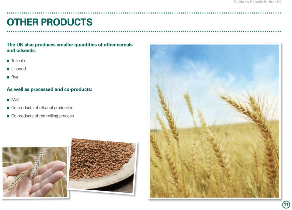 well as processed and co-products: n Malt n Co-products of