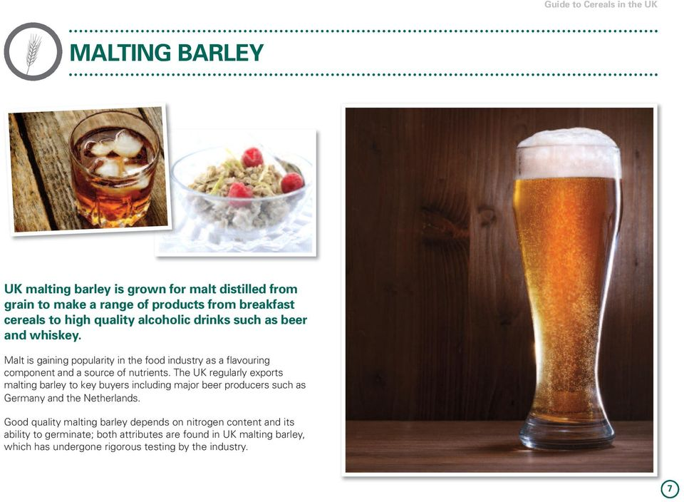 The UK regularly exports malting barley to key buyers including major beer producers such as Germany and the Netherlands.