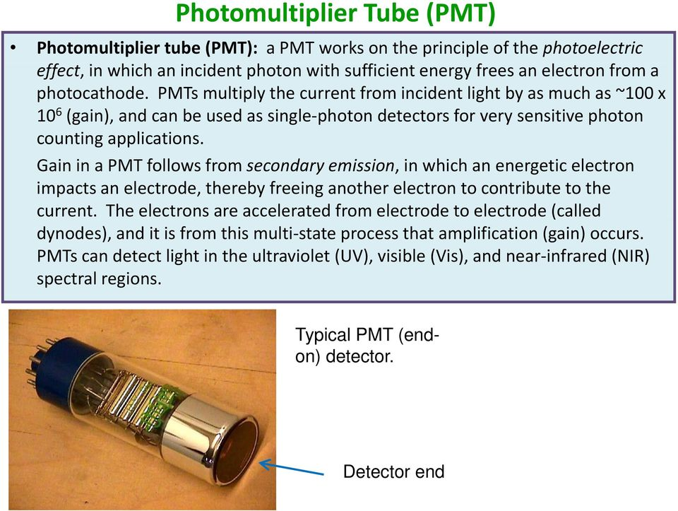 Gain in a PMT follows from secondary emission, in which an energetic electron impacts an electrode, thereby freeing another electron to contribute to the current.