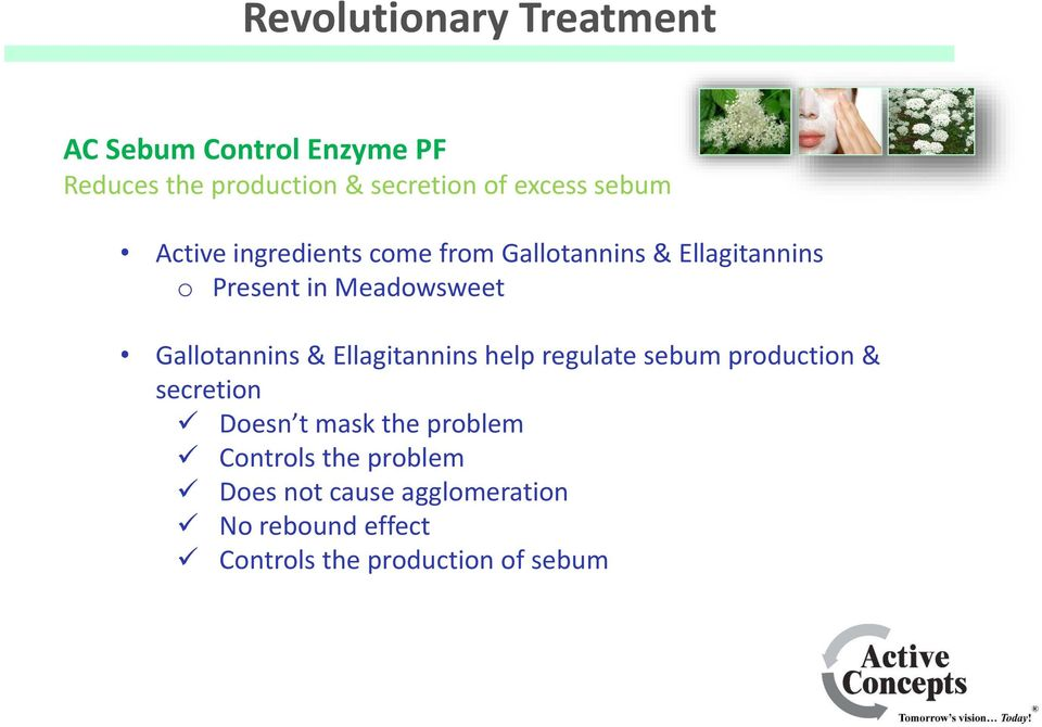 Gallotannins & Ellagitannins help regulate sebum production & secretion Doesn t mask the