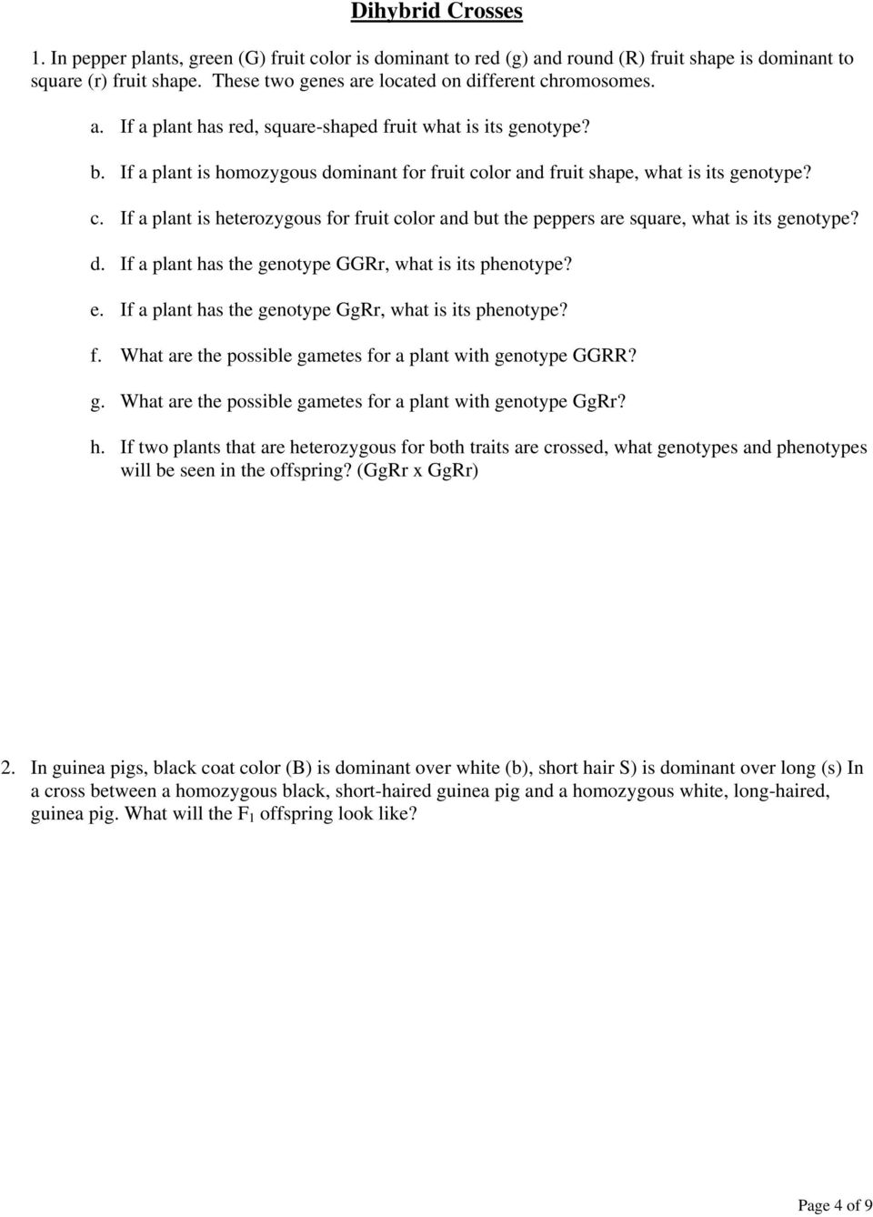 Phenotypes and Genotypes of Single Crosses PDF – Genotype and Phenotype Worksheet