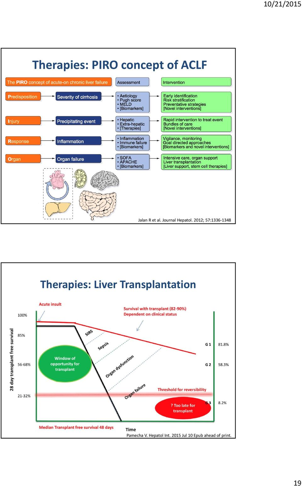 2012; 57:1336 1348 Therapies: Liver