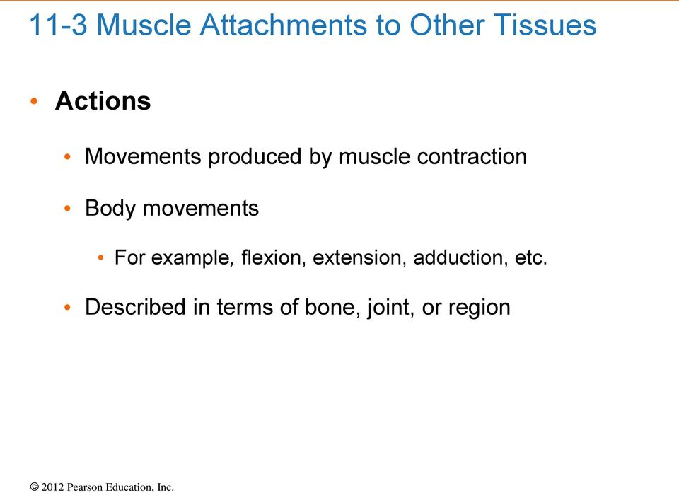 movements For example, flexion, extension,