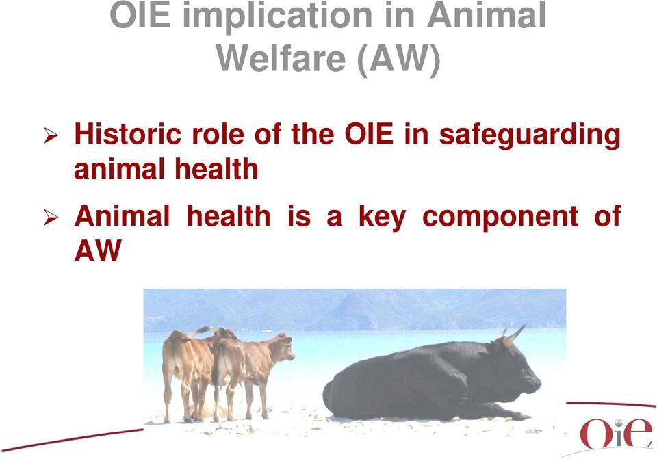 the OIE in safeguarding animal